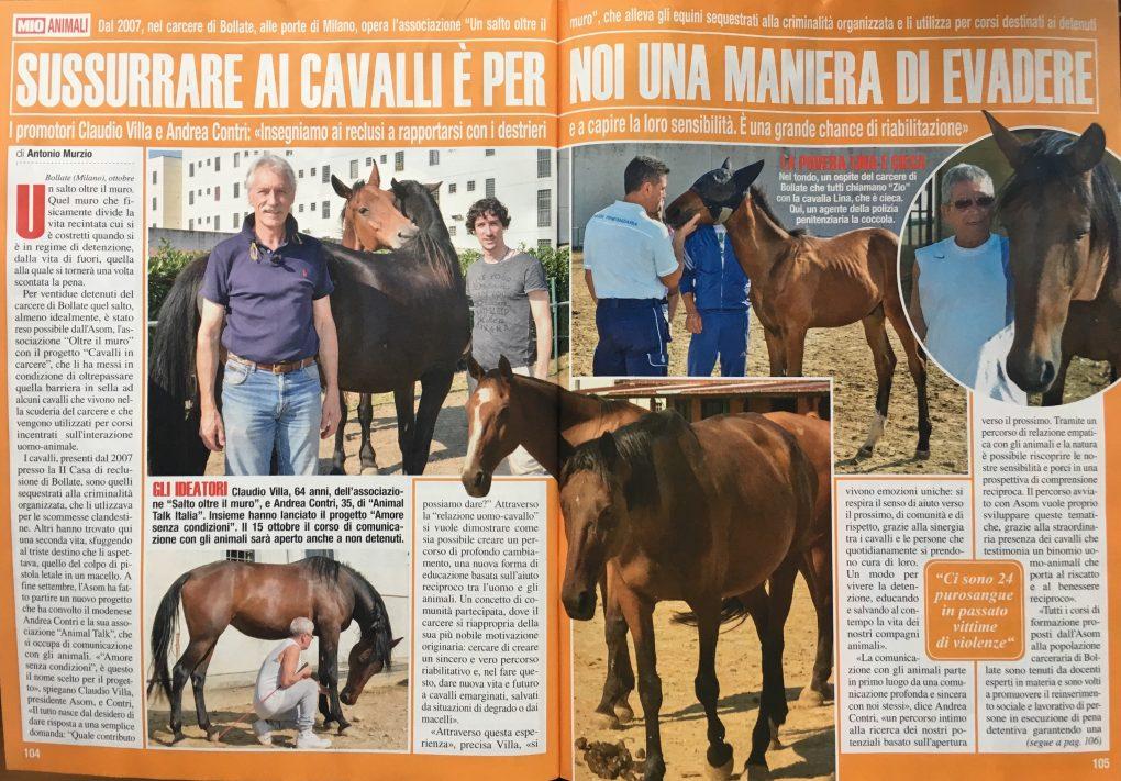 Mio #39 13 Oct 2016 Horse e Jail