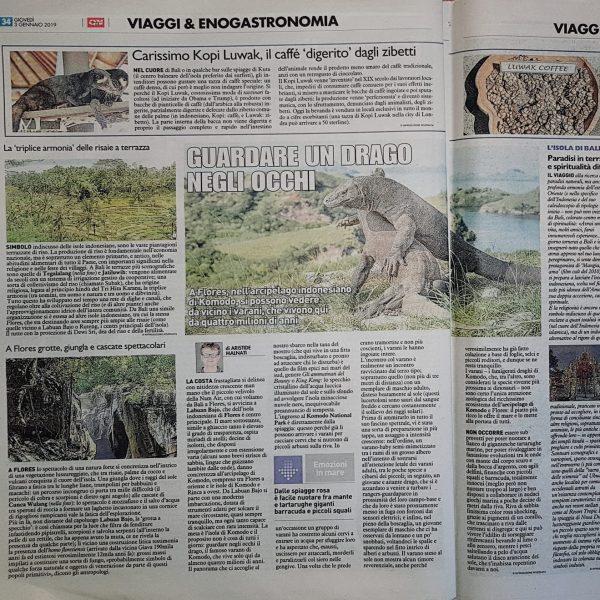 Quotidiano Nazionale Gennaio 2019 Komodo